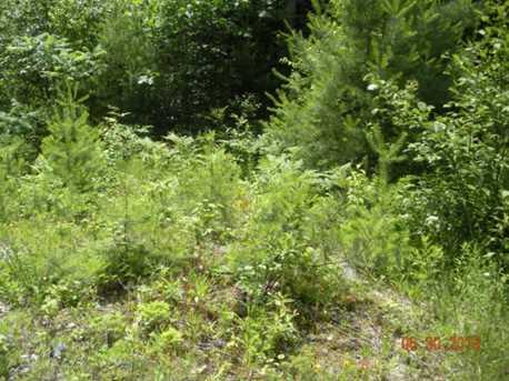 2 White Fawn Trail - Photo 2