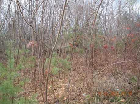 2 White Fawn Trail - Photo 14