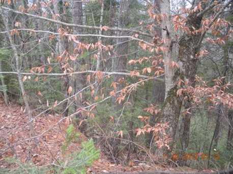 2 White Fawn Trail - Photo 13