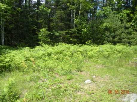 3 White Fawn Trail - Photo 3