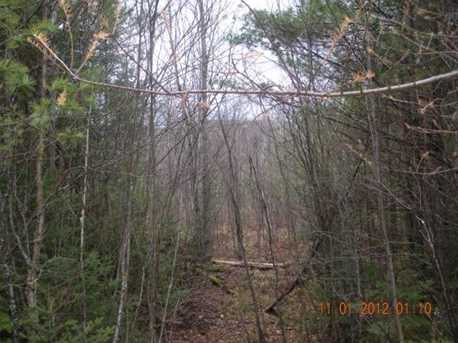 3 White Fawn Trail - Photo 9