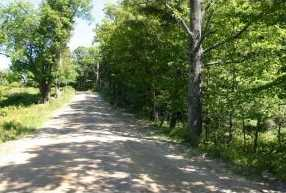 000 Lot 41 Sawtooth Road - Photo 3