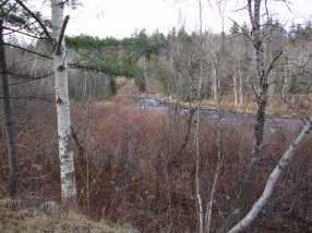 9005 Vt Route 30 - Photo 5