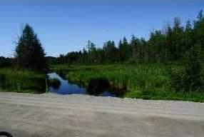 0 Evergreen Lane #1 - Photo 3