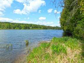 209 Coits Pond Road #Lot 3B - Photo 9