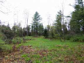 209 Coits Pond Road #Lot 3B - Photo 5