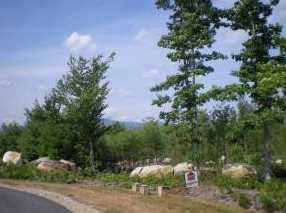 16 Deer Path Ln - Photo 11