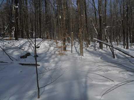 00 Goodrich Trail - Photo 19