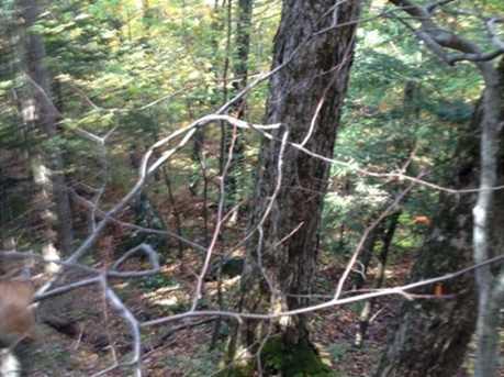 00 Goodrich Trail - Photo 6