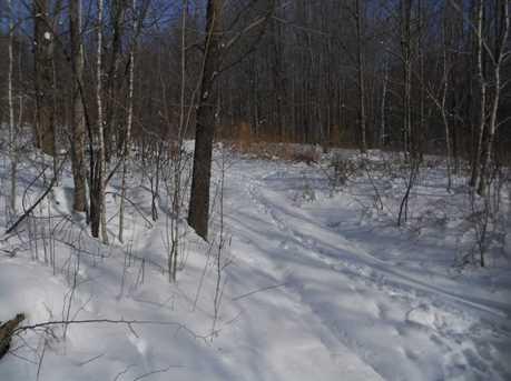 00 Goodrich Trail - Photo 9