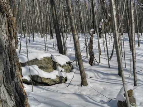 00 Goodrich Trail - Photo 22