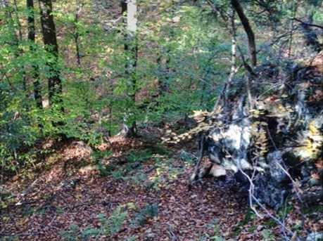 00 Goodrich Trail - Photo 5