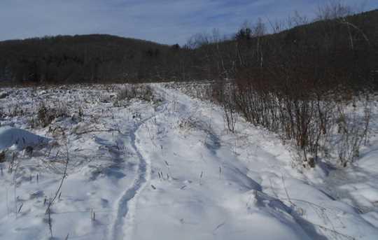 00 Goodrich Trail - Photo 15