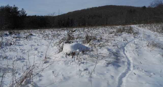 00 Goodrich Trail - Photo 16