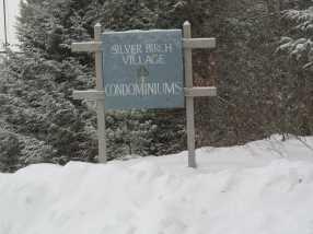 39 Silver Birch Place #1C - Photo 2