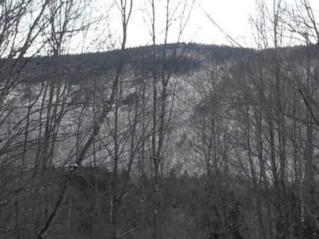 3100 E Mountain Road - Photo 17