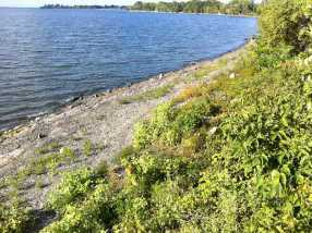 7 Coon Point Rd - Photo 23