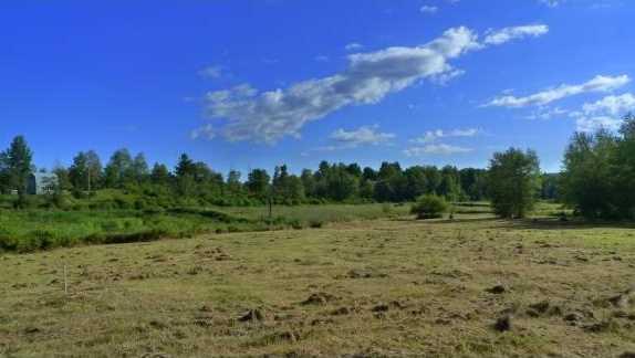 Lot 5 Carroll Meadow Lane - Photo 1