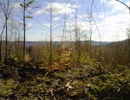 Lot 124 Freeman Colby Road - Photo 3