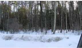 Lot #9 &amp 9-1 Old Wolfeboro Rd - Photo 13