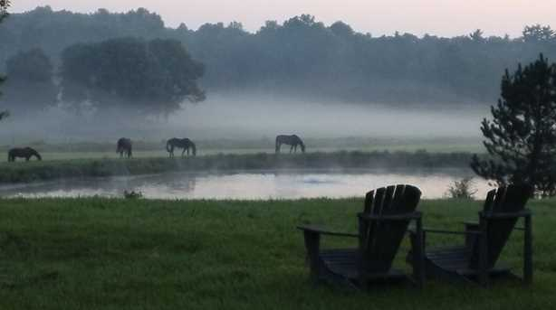 1816 Morgan Horse Farm Rd - Photo 3