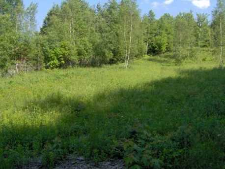 Lot #4 Rogers Rd - Photo 3