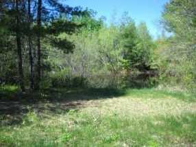 L2 Coffin Brook Road - Photo 3