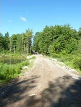 Lot 5 Birch Lane - Photo 3