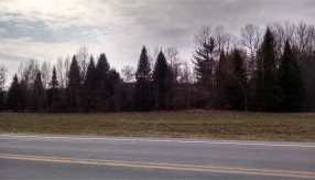 Lot 1 Route 30 North - Photo 1