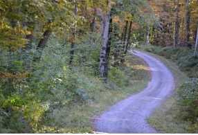 Lot 1 Ingalls Road - Photo 3