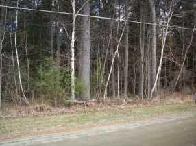 Lot 8 Clark Drive - Photo 3