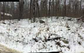 491/492 Scattered Timber - Photo 1