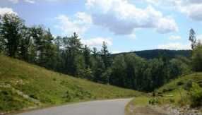 101 Falcon Ridge Road #8 - Photo 15