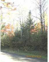 10673 Dubeau Road - Photo 3
