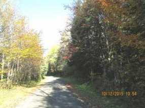 10673 Dubeau Road - Photo 1