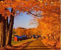 5436 Rush Meadow Road - Photo 35