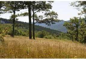 0 High Meadow Road - Photo 7