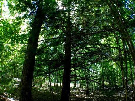 530 Finbars Forest - Photo 5