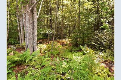 Lot 20 Beaver Path - Photo 1