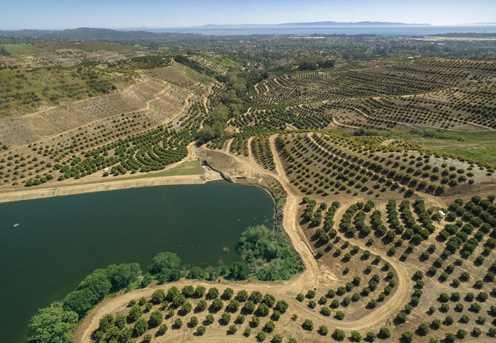 0 Rancho Del Ciervo - Photo 15