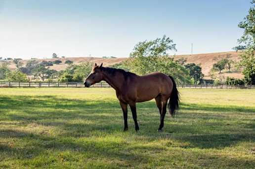 4500 Via Rancheros Rd - Photo 39