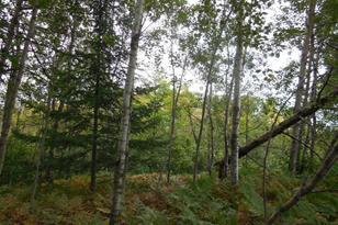 Xxx Scotch Pine Road - Photo 1