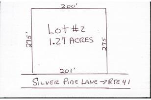 R-2 Silver Pine Lane - Photo 1