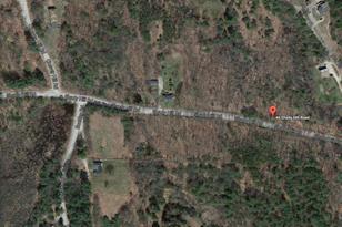 Shady Hill Road #Parcel 000404 000168 000000 - Photo 1