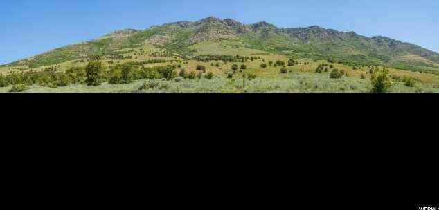 4015 Elk Ridge Trl - Photo 11