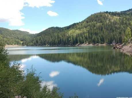 1 N Puffer Lake Property - Photo 11