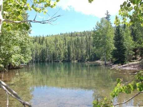 1 N Puffer Lake Property - Photo 13