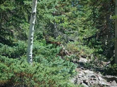 1 N Puffer Lake Property - Photo 33