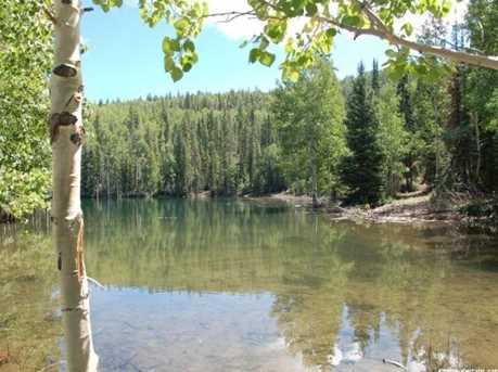1 N Puffer Lake Property - Photo 15