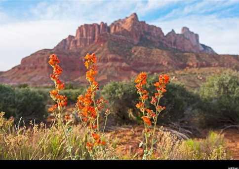 2530 Anasazi Way - Photo 3